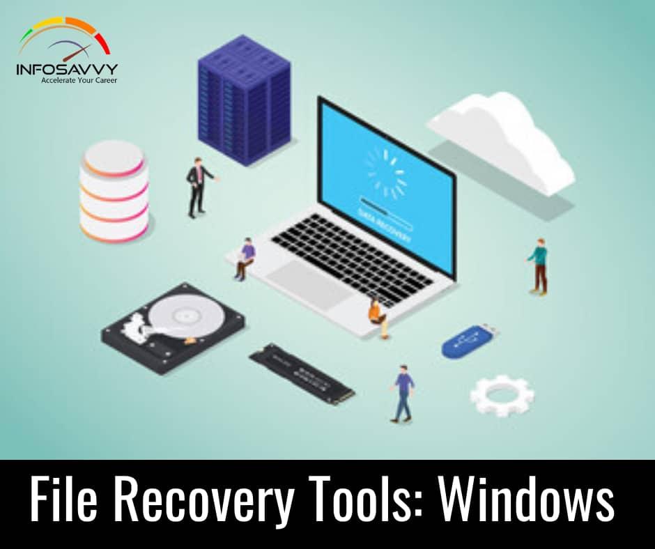 File Scavenger Pro 5.3 Crack Portable License Key [Windows]