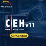 CEH V11 Certification Training